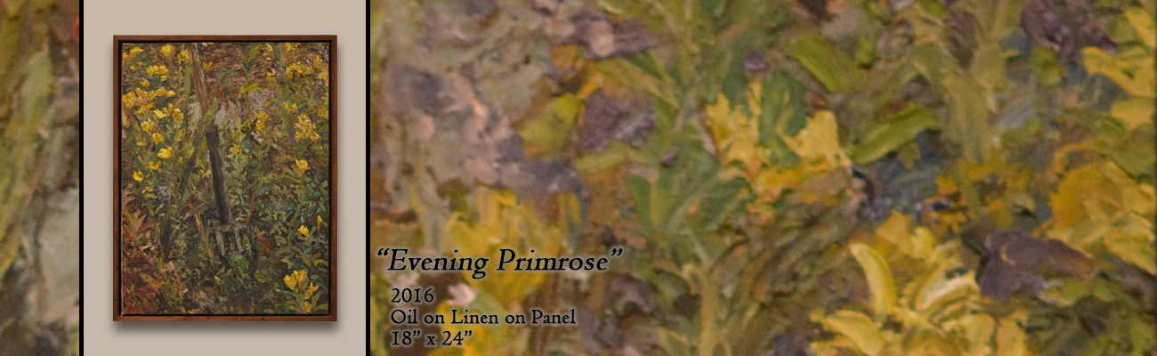 Oil Painting: Evening Primrose